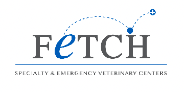 Fetch Greenville logo