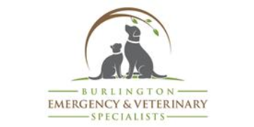 Go to Vermont Veterinary Internal Medicine profile